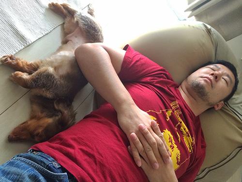 お昼寝おじさん