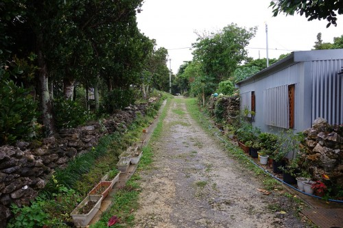 鳩間島の道