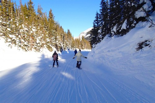 スキー・アウト