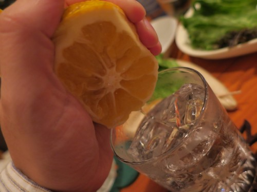柑橘系を搾って