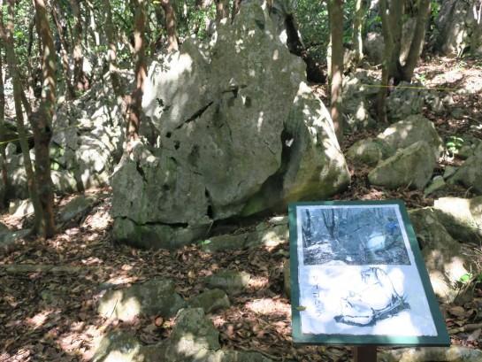 奇岩 サイゴリラ