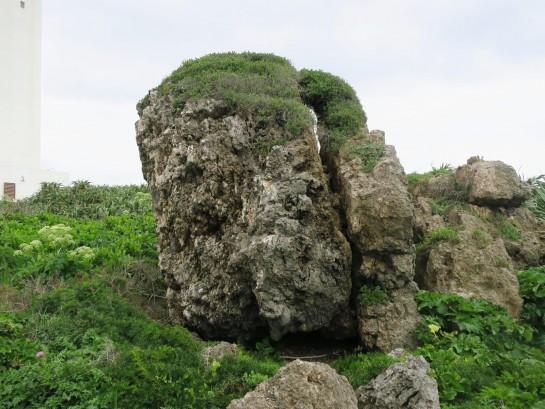 誰かに似てる岩