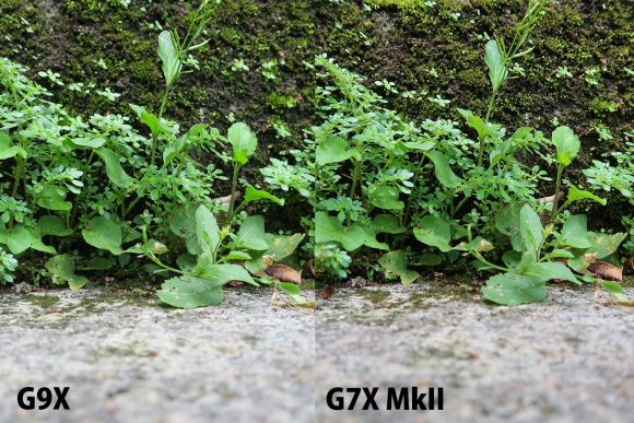 G7X MKII と G9X 画像比較3
