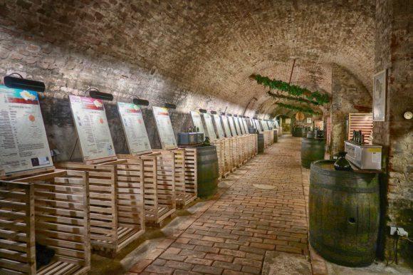 国立ワインセンター ワインセラー