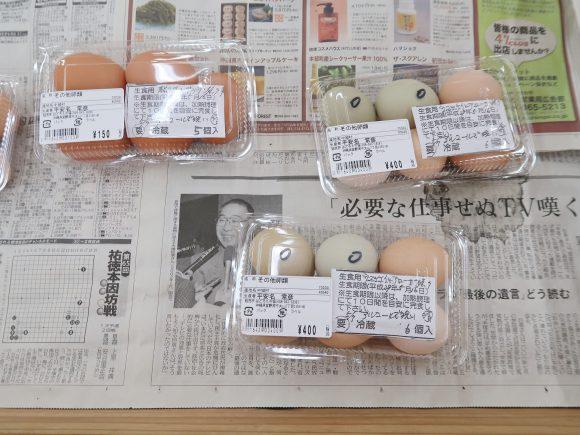 アローカナと烏骨鶏の卵