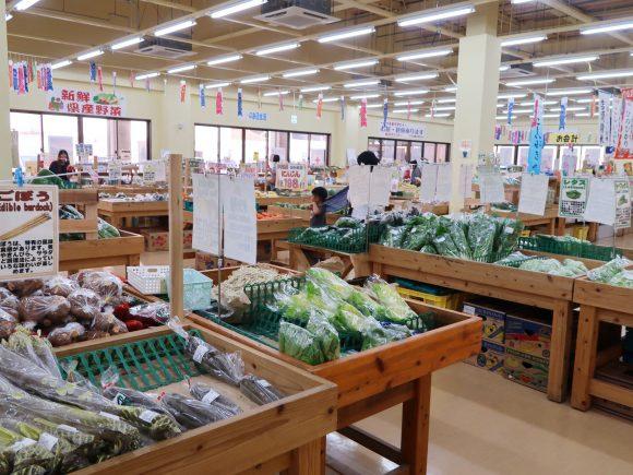 野菜がたくさん