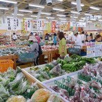 沖縄 ちゃんぷる〜市場
