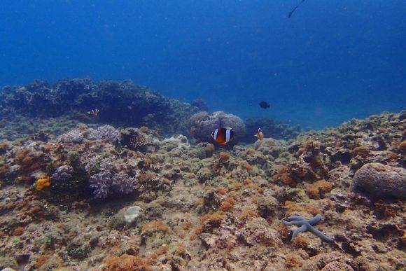 浦添の海 その2