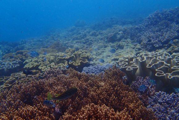 浦添の海 その3