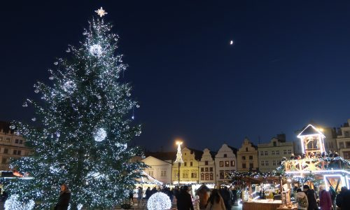 月とクリスマスツリー