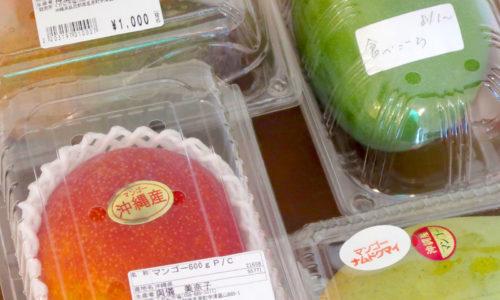 マンゴー豊作! 4つのマンゴーを食べ比べてみた。