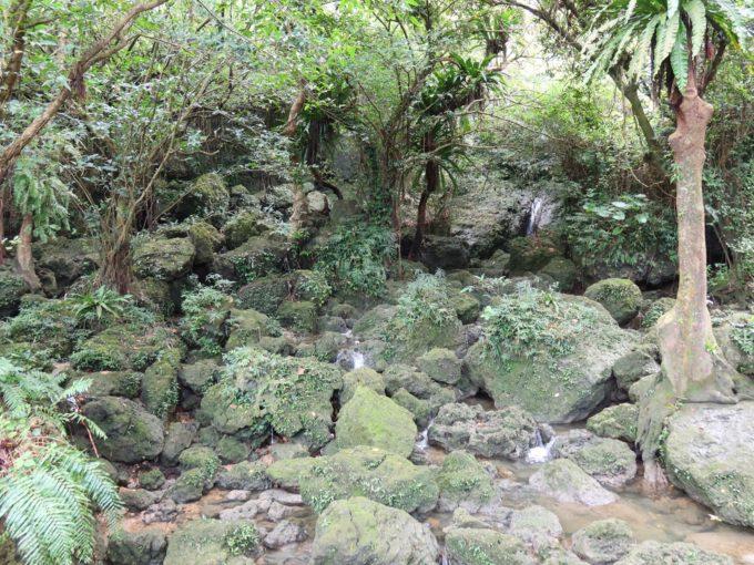 小さな流れが安謝川に