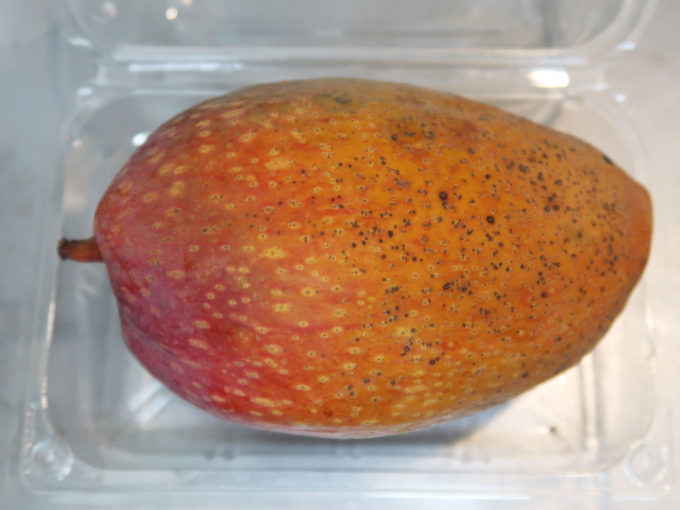 マンゴー ギョクブン種