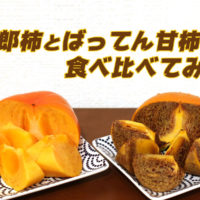 柿の季節! 次郎柿とばってん甘柿を食べ比べてみた。