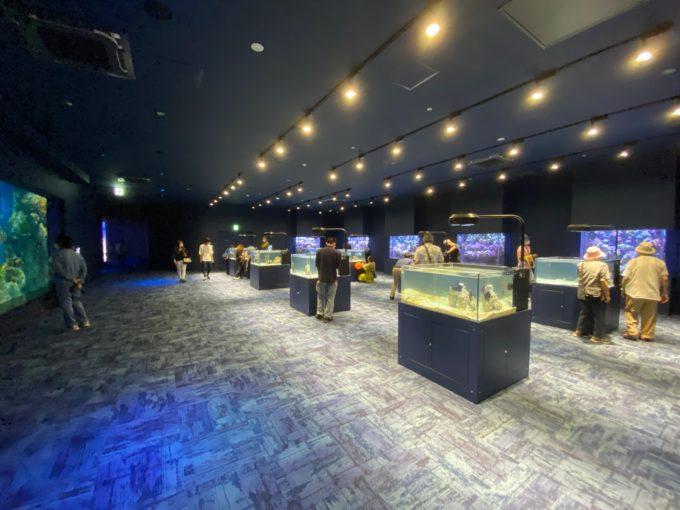 1Fの展示室